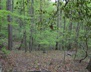 LT 11 North Ridge Trail, Brasstown image
