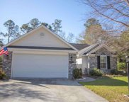 253 Old Cedar Loop, Pawleys Island image