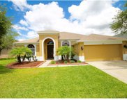 12837 Tar Flower Drive, Tampa image