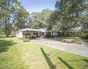 29939 S Rose St, Livingston image