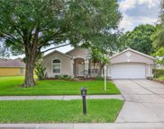 6040 Catlin Drive, Tampa image