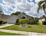 16418 Coopers Hawk Avenue, Clermont image