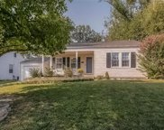 1135 Brownell, St Louis image