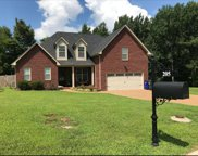 205 Morgan Trace Ct, White House image