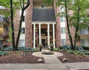 4900 Forest Avenue Unit 108, Downers Grove image