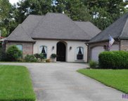 14201 Twelve Oaks Dr, Walker image