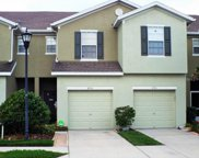 8933 Turnstone Haven Place, Tampa image