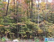 Pine Mountain Rd Unit 1 Lot, Remlap image