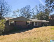 111 Lakeview Dr, Homewood image