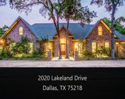 2020 Lakeland, Dallas image