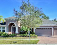 20222 Oak Thorn Way, Tampa image