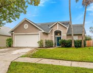 10333 Crystal Point Drive, Orlando image