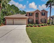 2437 SOUTHERN LINKS DR, Fleming Island image