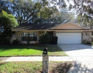 3650 Spring Valley Drive, New Port Richey image