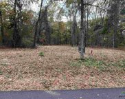 Tract 7 Old Tyler Rd., Whitehouse image
