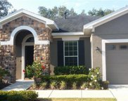 15850 Starling Water Drive, Lithia image