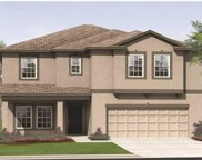 6217 Horse Mill Place, Palmetto image