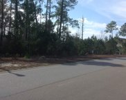 Lot 146 PH 1, Sago Palm Dr., Myrtle Beach image