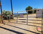 10263 Ham Luddy  Road, Mountain Ranch image