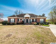2902 Winterberry Way, Hampton Cove image