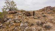 1625 E Desert Willow Drive Unit #62, Phoenix image