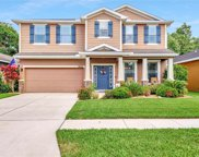 8424 Tidal Breeze Drive, Riverview image