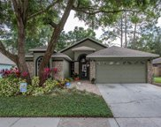 507 Valencia Park Drive, Seffner image