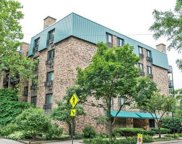 401 West Webster Avenue Unit 308, Chicago image