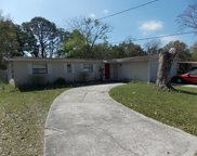 324 BLAIRMORE BLVD East, Orange Park image