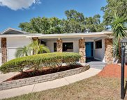 1716 Balmoral Drive, Clearwater image