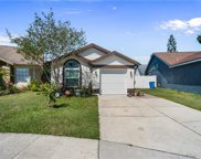 8606 Twin Farms Place, Tampa image