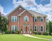 2110 Woods Trc, Hoover image