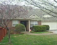 8001 Castle Pines Ct, Louisville image