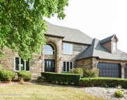 10653 Maue Drive, Orland Park image