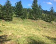 6590 & 6628 Green Mountain Rd Unit Lot 4, Woodland image