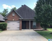 4205 Willow Brook Cir, Birmingham image