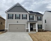 970 Equine Dr., Roebuck image