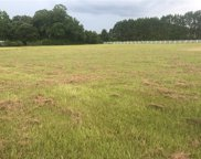 14977 County Road 28, SUMMERDALE image