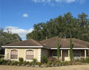 3179 Blackwater Oaks Way, Mulberry image