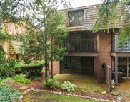 446 Lageschulte Street Unit 1-446, Barrington image