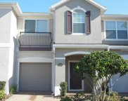 12231 Citruswood Drive, Orlando image