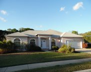 7114 87th Lane E, Palmetto image