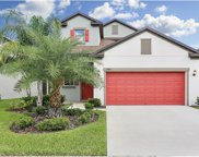 19175 Alexandrea Lee Court, Land O Lakes image