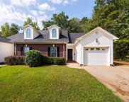 406  Danielle Way, Fort Mill image