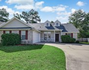 12815 DUNNS VIEW DR, Jacksonville image