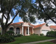 17414 Heather Oaks Place, Tampa image