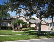12405 Bristol Commons Circle, Tampa image