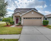 21040 Green Wing Court, Land O' Lakes image