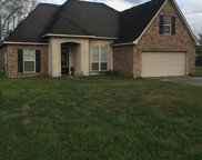 14092 Serenity Cove Dr, Gonzales image