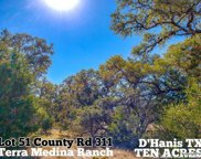 LOT 51 County Road 311, Dhanis image